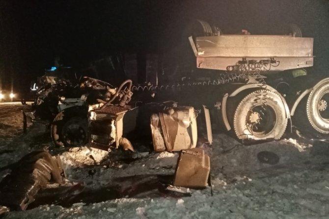В ДТП с двумя грузовиками в Свердловской области погиб водитель (1)