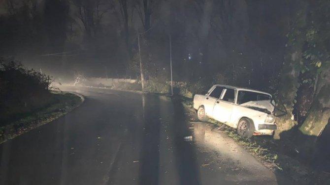 В Сочи ВАЗ врезался в дерево – пострадали двое