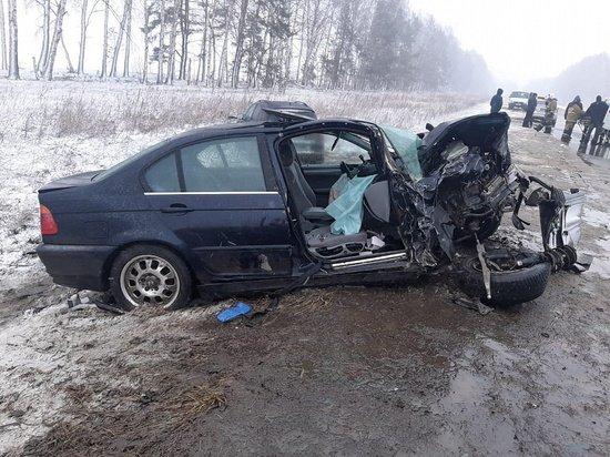 7-летняя девочка погибла в ДТП в Рязанской области (3)