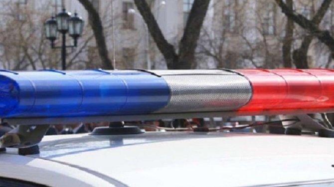 В ДТП в Любинском районе Омской области погиб человек