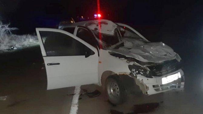 Подросток погиб в ДТП с лошадью под Астраханью