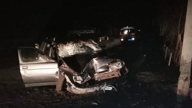 Под Воронежем пьяный водитель сбил семью— 2 человека погибли, втом числе ребенок