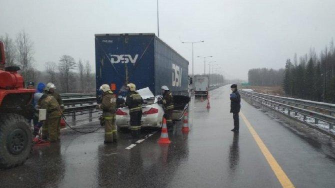 Два человека погибли в ДТП в Бологовском районе Тверской области