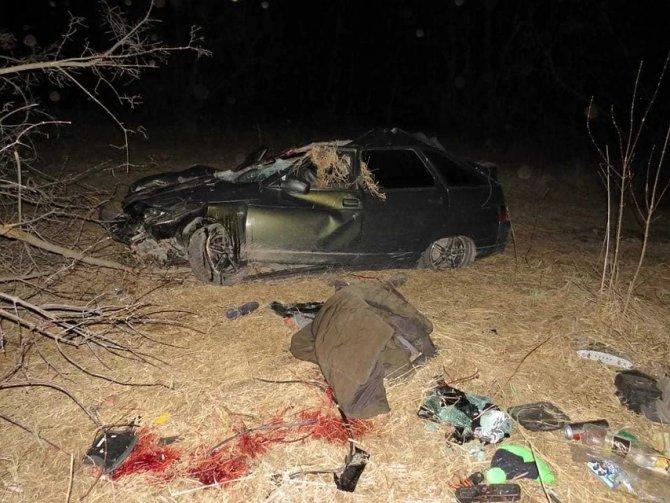 В ДТП с лошадью в Башкирии погиб мужчина (1)