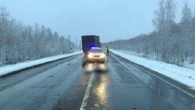 В Самарской области водитель насмерть сбил пешехода и скрылся