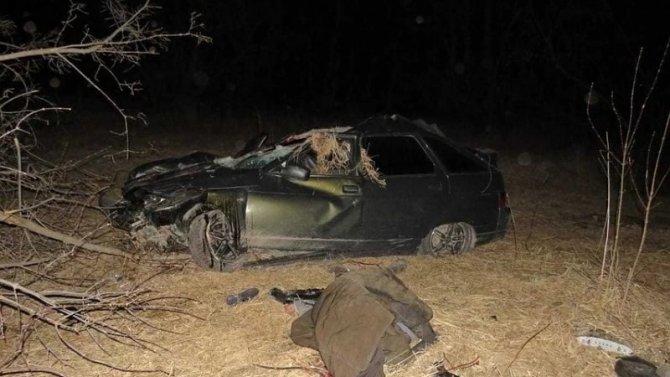 В ДТП с лошадью в Башкирии погиб мужчина