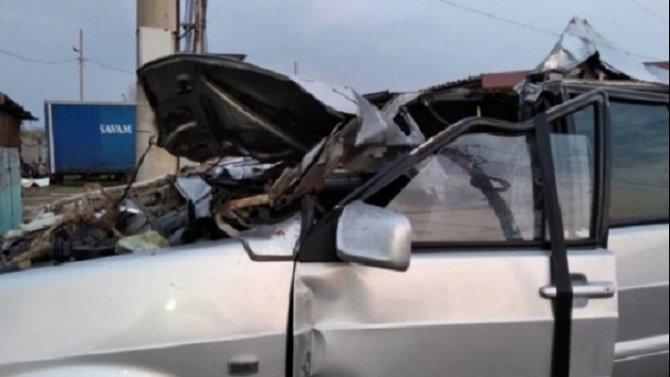 В ДТП с лошадью в Волгоградской области погиб водитель