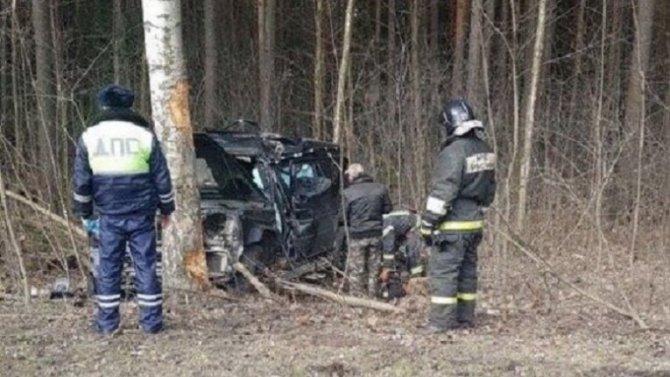 На Приморском шоссе иномарка врезалась в дерево – погиб человек