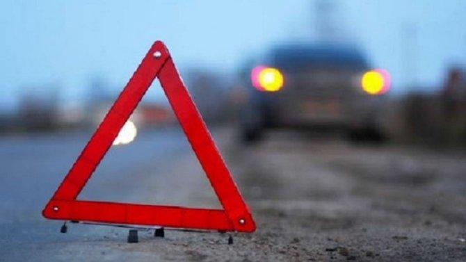Пожилой мужчина погиб в ДТП в Порховском районе