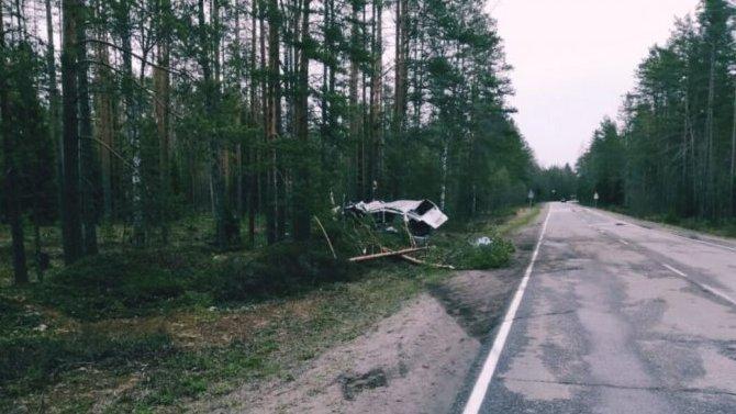 17-летний водитель погиб в ДТП в Ленобласти