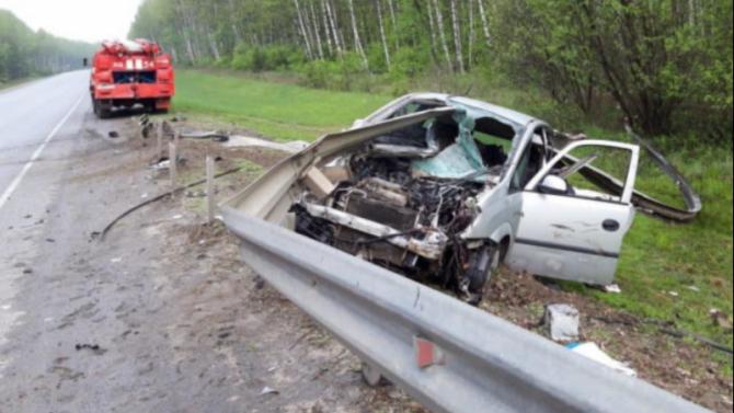 В ДТП в Путятинском районе погиб человек