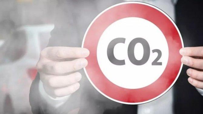 Пандемия: выбросы углекислого газа снизились более чем натреть