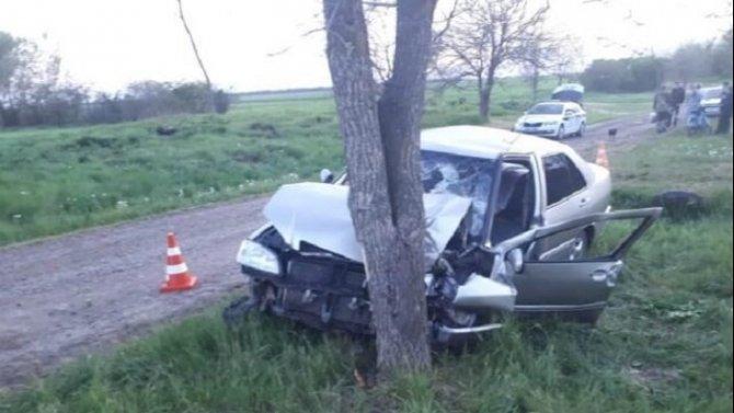 В Белоглинском районе машина врезалась в дерево – пострадали трое