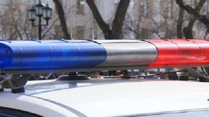 В Красноярском крае пьяный водитель сбил 2-летнего мальчика и попытался скрыться