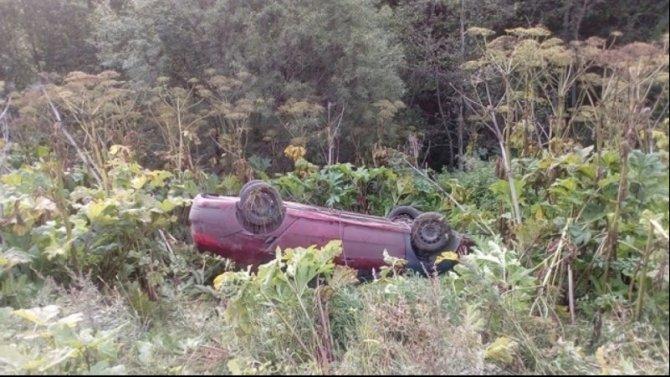 В ДТП под Себежем погиб пассажир иномарки
