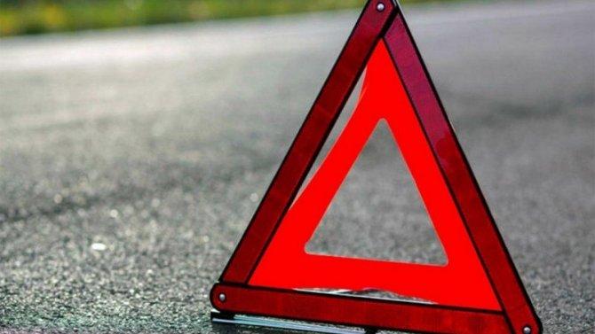 В ДТП с кабаном в Татарстане погибла девушка