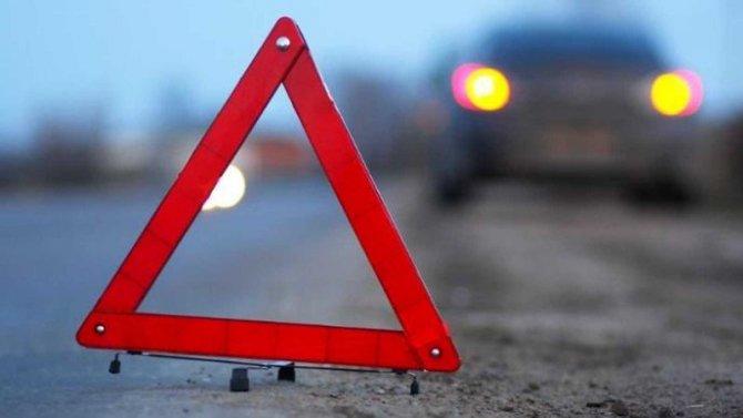 Три человека пострадали в ДТП с лосем на трассе
