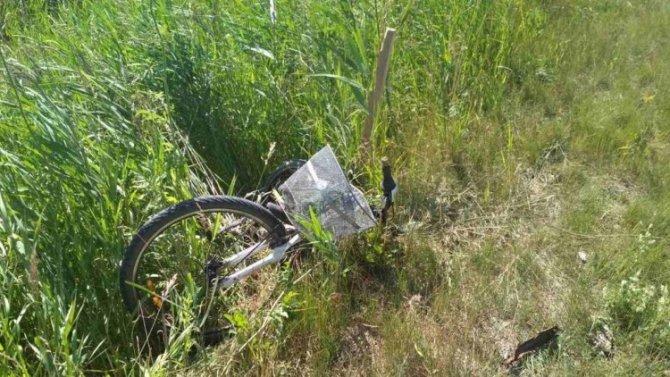 Под Соколом насмерть сбили велосипедиста – водитель скрылся