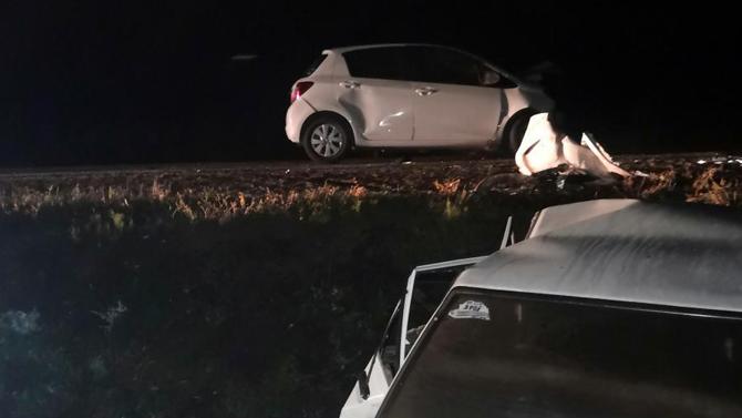 Пассажир легковушки погиб вДТП из-за выбежавшего надорогу оленёнка