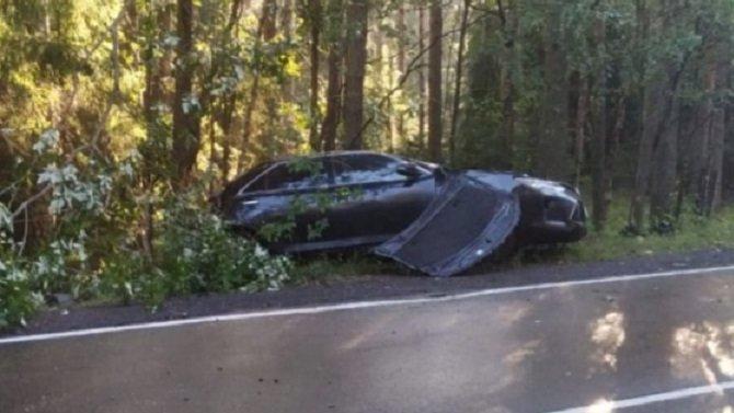 Под Выборгом иномарка врезалась в дерево – погиб водитель