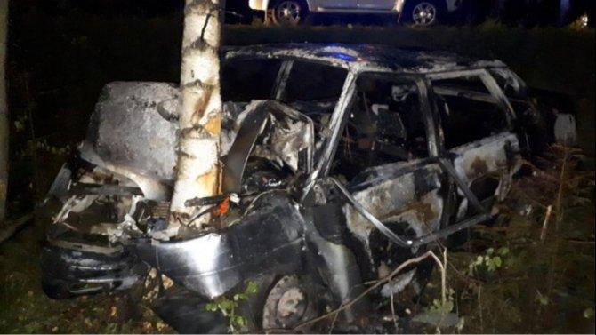 Под КостромойВАЗ врезался в дерево – водитель погиб