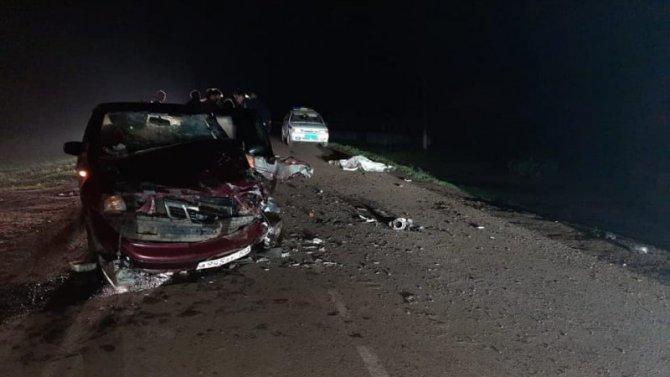 Водитель мопеда погиб в ДТП в Чишминском районе Башкирии