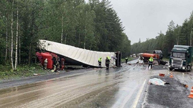 Водитель грузовика погиб в ДТП в Челябинской области