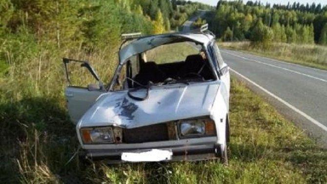 В Пермском крае в ДТП с лосем пострадали два человека
