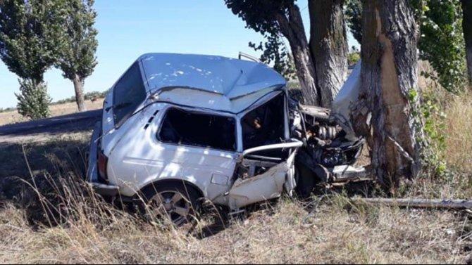 Под Воронежем «Нива» врезалась в дерево – водитель погиб