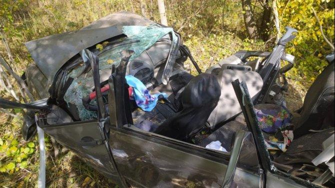 Два человека погибли при опрокидывании автомобиля в Марий Эл