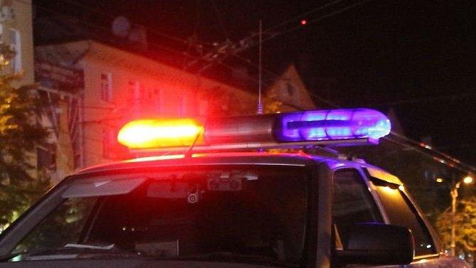 Трое полицейских погибли в ДТП во Владимирской области