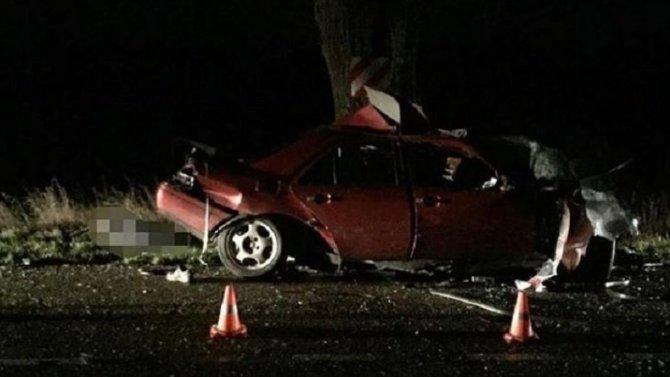 Под Правдинском иномарка врезалась в дерево – водитель погиб