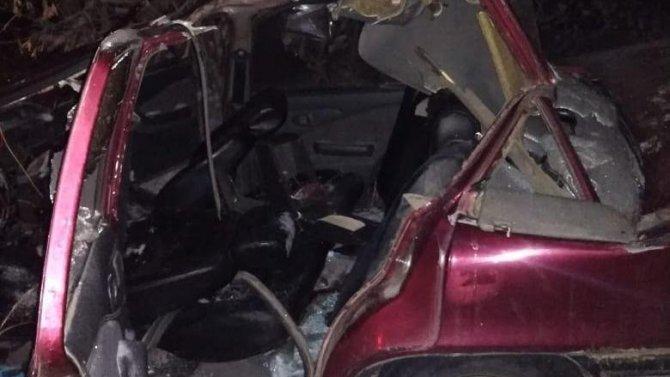 Трое подростков погибли в ДТП с лошадьми в Башкирии