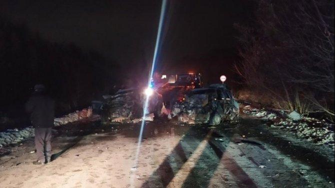 В ДТП в Одоевском районе Тульской области погибли оба водителя