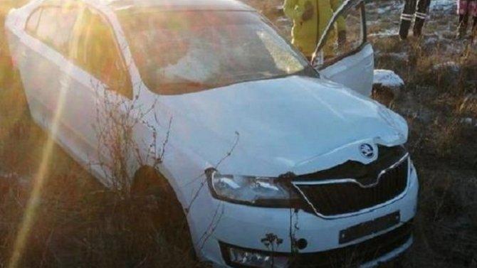 В ДТП под Ефремовым погиб 20-летний водитель