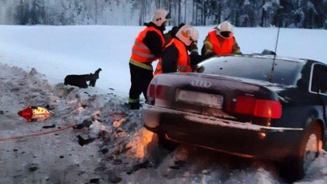 В ДТП в Карелии погиб водитель
