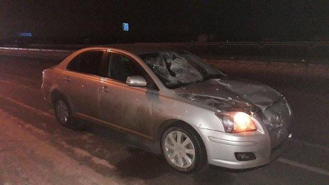 В ДТП в Медведевском районе Марий Эл насмерть сбили пешехода