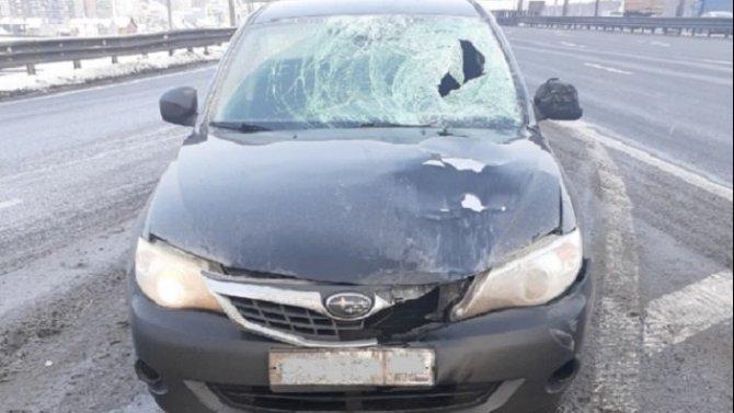 На КАД в Петербурге сбили дорожного рабочего