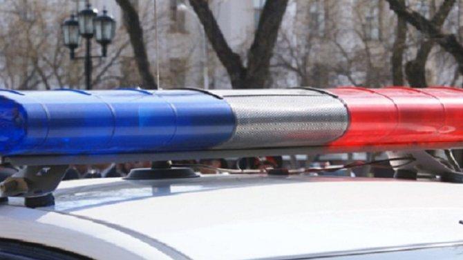 В Бокситогорском районе Ленобласти автобус насмерть сбил пешехода
