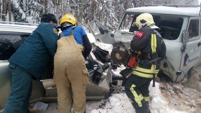 Под Гусь-Хрустальным случилось «лобовое», вкотором пострадало сразу 7 человек