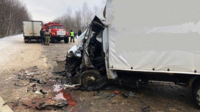 Мощная залипуха сдвумя грузовиками вКасимовском районе Рязанской области