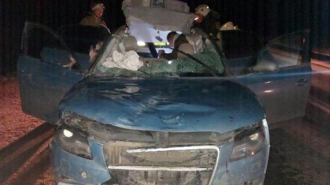 Два человека пострадали в ДТП с лосем в Тверской области