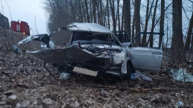Два человека погибли в ДТП в Лискинском районе Воронежской области