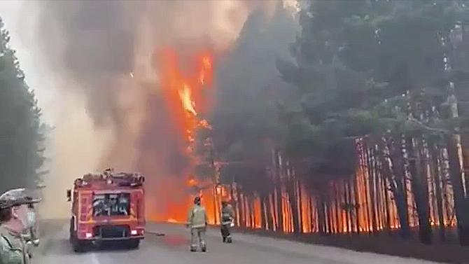 Лесной пожар Екатеринбург 17 мая 2021 год