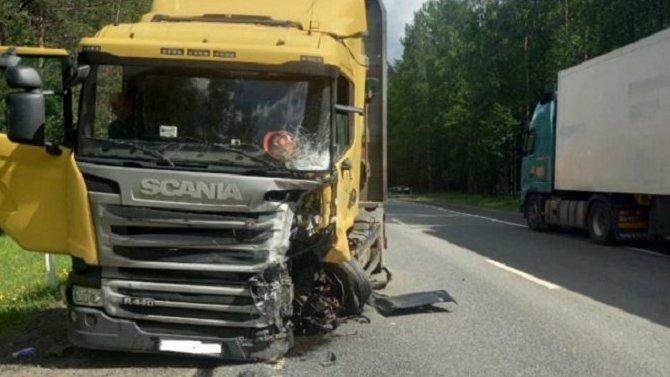 Двое взрослых и 5-летний ребенок погибли в ДТП в Ленобласти