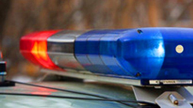 Мужчина и женщина погибли в ДТП с грузовиком в Липецкой области