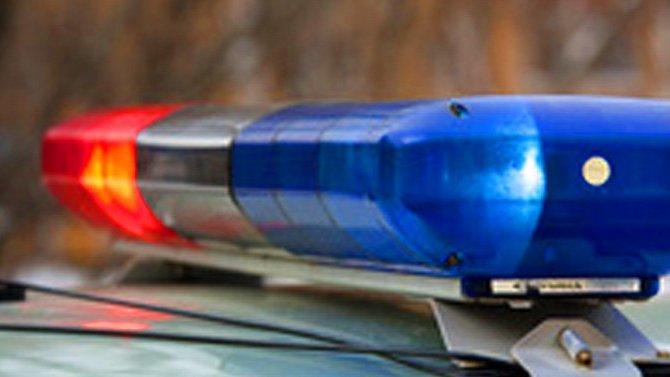 Мужчина и подросток погибли в ДТП в Селивановском районе Владимирской области
