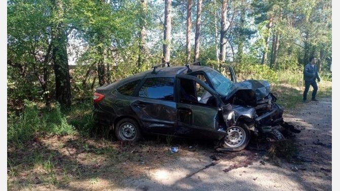 В Марий Эл «Лада» врезалась в дерево – водитель погиб