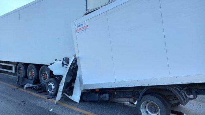 В ДТП в Богучарском районе Воронежской области погиб молодой водитель