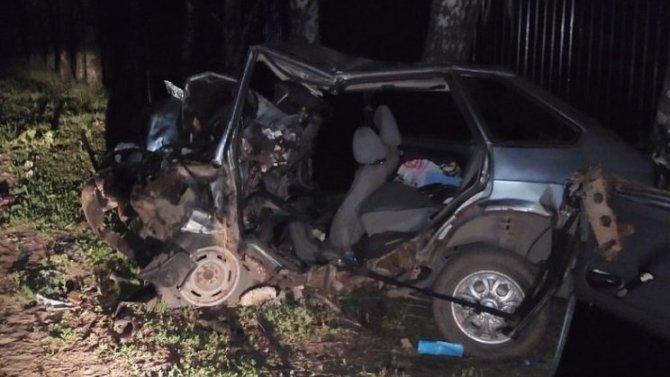 ВАЗ врезался в дерево в Узловском районе – водитель погиб